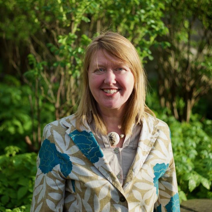 Sarah Gibson, Wiltshire Lib Dem Spokesperson for Planning & Housing