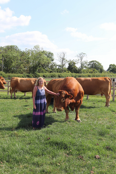 Liz Webster with Cows in Field